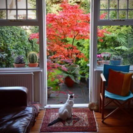 Arredo: vesti la tua casa nei toni d'autunno/cucine