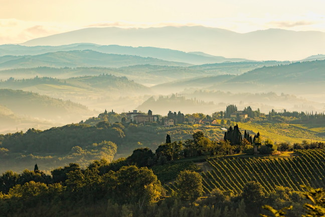 Da Bordeaux a Barolo i mille volti del vino