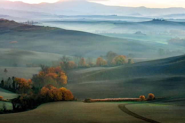 Viti e vendemmie: i paesaggi che parlano di vino