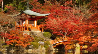 Foliage: le città più belle nei colori dell'autunno