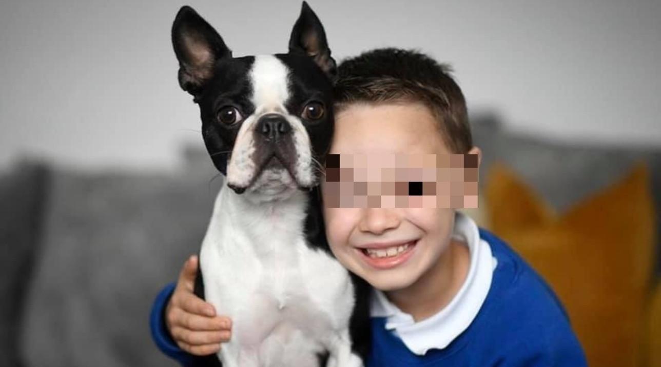 Gli rubano il cane e per ritrovarlo disegna a 7 anni volantini per ritrovarlo: la condivisione in Rete lo aiuta