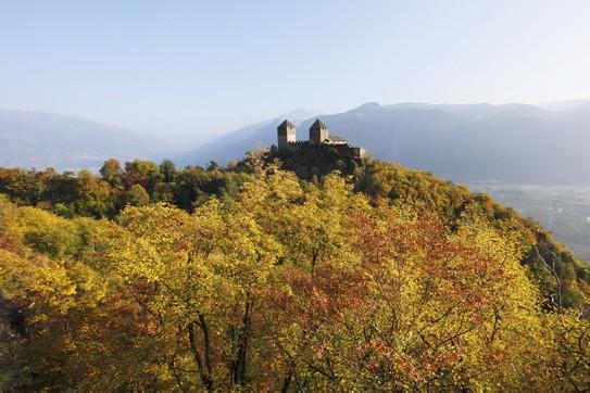L'Alto Adige celebra la castagna, regina dell'autunno