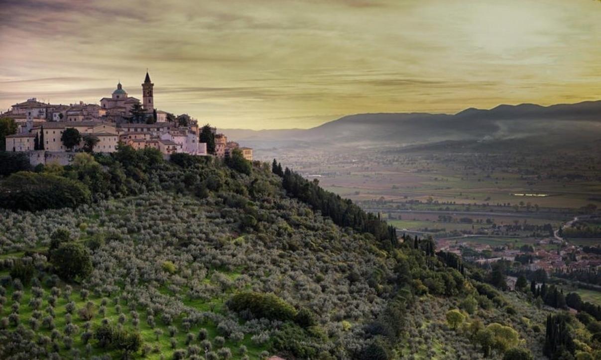 Extravergine: oltre cento città festeggiano l'olio d'oliva