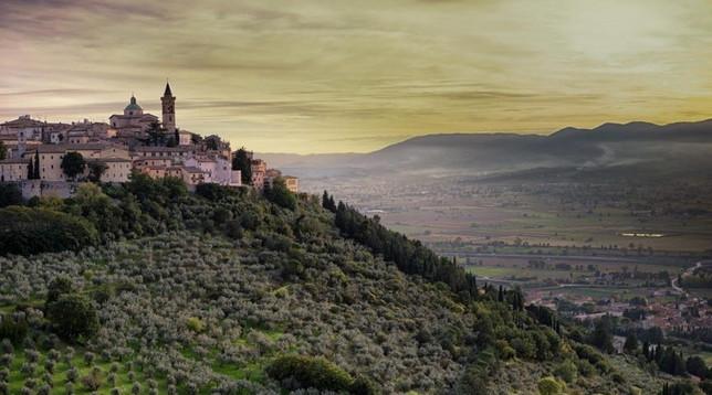 Italia extravergine: 124 città celebrano l'olio d'oliva
