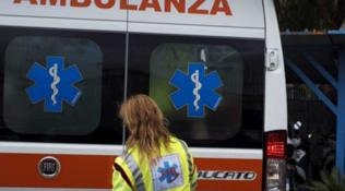 Pordenone, 74enne aggredito e ucciso da due cani da difesa