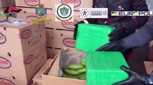 Porto Gioia Tauro, maxi sequestro di droga: una tonnellata di coca | La droga era nascosta nelle banane