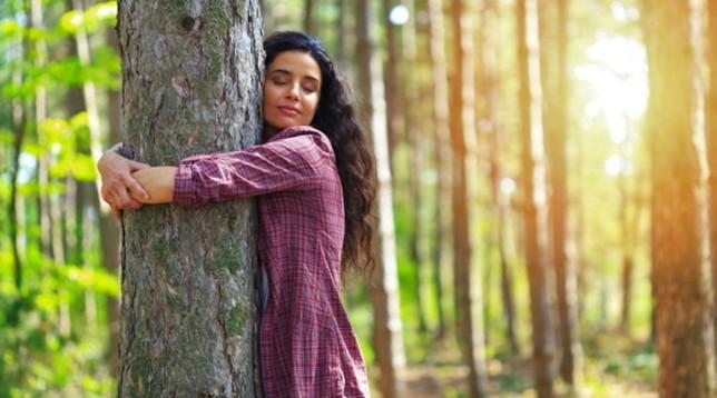 Giornata nazionale degli alberi: stare nel verde allunga la vita