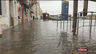 Venezia, torna l'incubo acqua alta