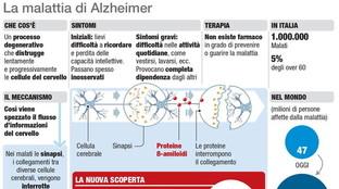 Alzheimer, come funziona la malattia