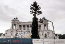Roma e Milano, sfida di Natale: Spelacchio giunto nella capitale, Sala accendo loSwarovski