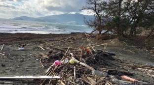 Toscana, la spiaggia devastata negli scatti postati da Pelù