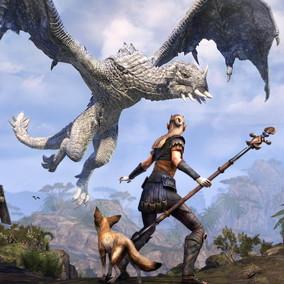 The Elder Scrolls: la caccia ai draghi è valsa 200mila dollari di beneficenza