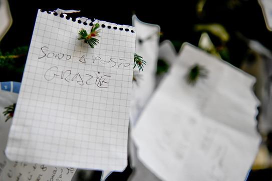 """Sull'albero di Natale di Napoli non solo richieste: tra i mille Sos anche un """"grazie, sono a posto"""""""