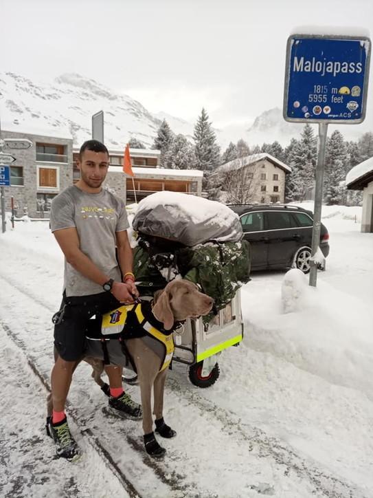 A piedi da Lodi fino a Capo Nord con il cane Victor: l'impresa di un 24enne per avere fondi contro il neuroblastoma
