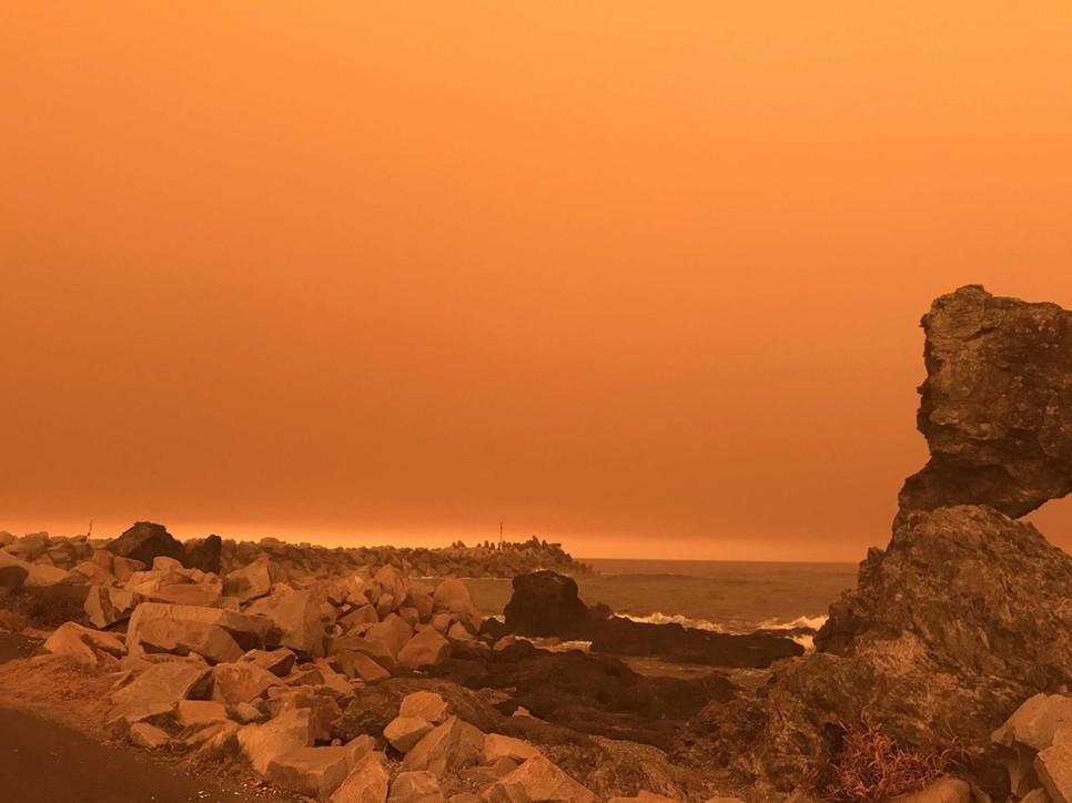 Devastanti incendi in Australia, Paese in ginocchio