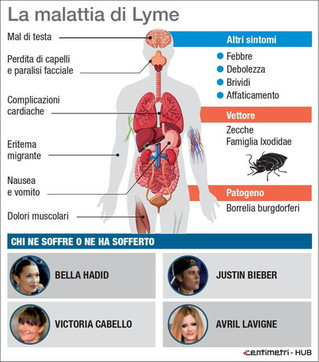 Che cos'è la malattia di Lyme