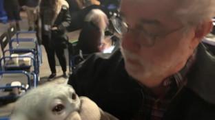 """""""Nonno"""" George Lucas culla Baby Yoda, lo scatto commuove il Web"""