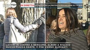 Bergamo, catene di abbracci per salvare gli alberi di Piazza Dante