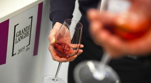 I grandi vini rossi piemontesi
