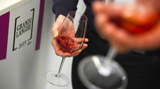 Ad Alba i grandi vini delle Langhe
