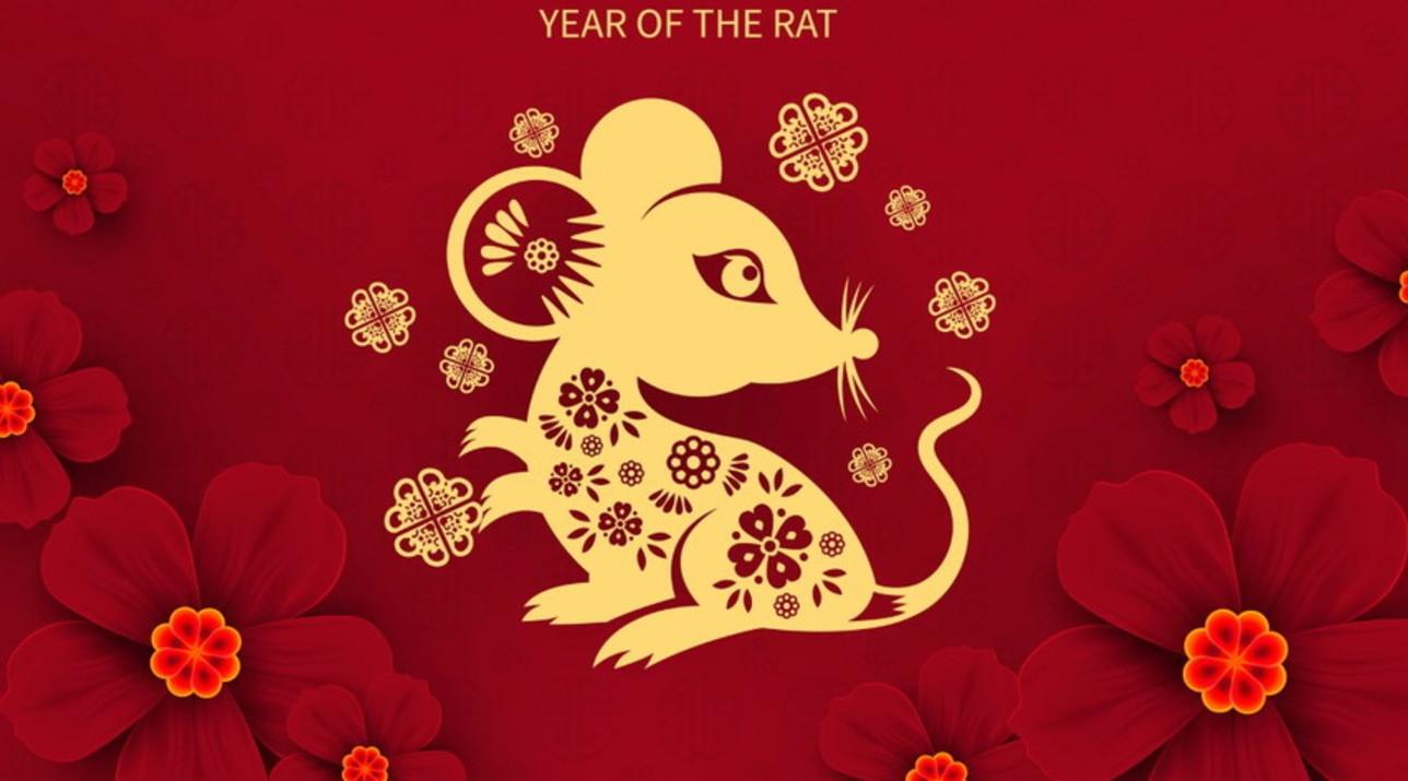 Oroscopo Cinese Maiale 2019 capodanno cinese: arriva l'anno del topo - tgcom24