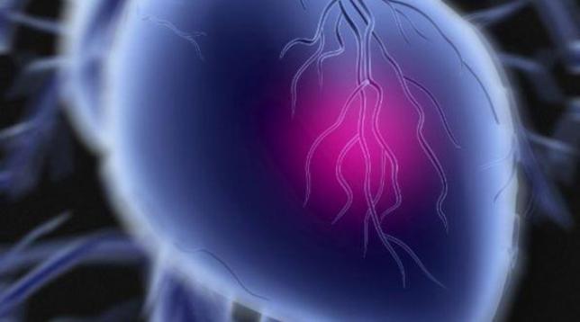 Pavia, aritmia ventricolarecurata con protoni: è la prima volta al mondo