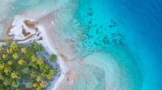 Tahiti e le sue spiagge: un tuffo nella bellezza