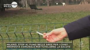 Milano, è guerra al fumo: si va verso lo stop alle sigarette anche nelle aree cani