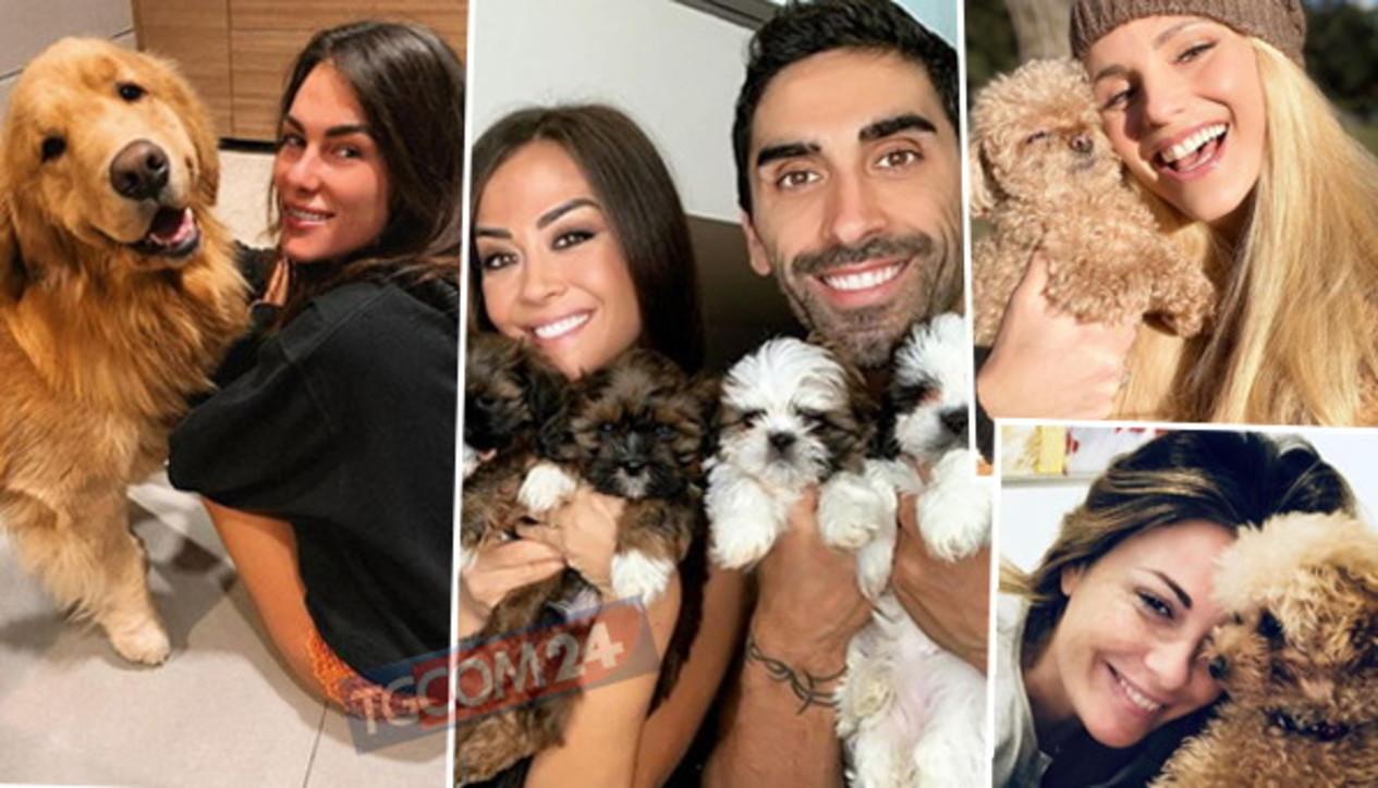 Soli... con un cane: le celebrità e loro amici a quattro zampe