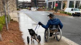 Georgia, disabile su sedia a rotelle adotta cane con il carrellino rifiutato quattro volte