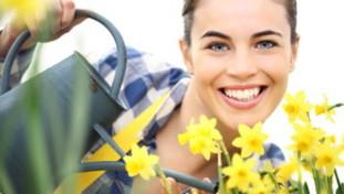 Garden Therapy: cinque buoni motivi per prendersi cura delle piante e tenere lontano lo stress