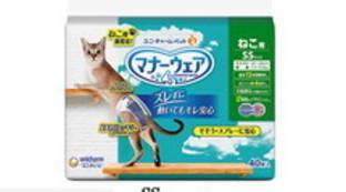 L'ultima trovata dal Giappone: i pannolini per i gatti domestici