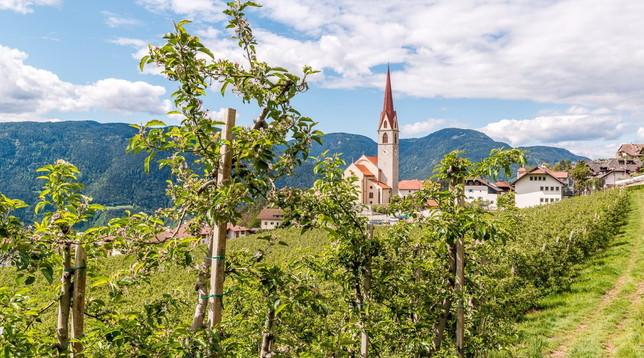 Alto Adige: Renon, il paradiso sopra Bolzano