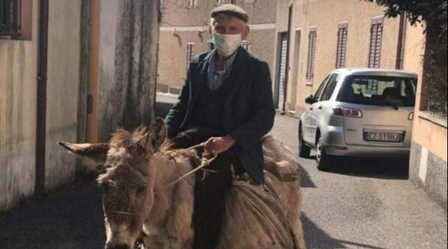Coronavirus, a Nuoro 81enne con la mascherina sull'asina: la foto diventa virale