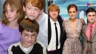 La saga di Harry Potter su Italia Uno: rivediamo cosa fanno oggii protagonisti
