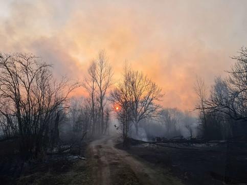 Ucraina, in fiamme la foresta radioattiva che circonda Chernobyl