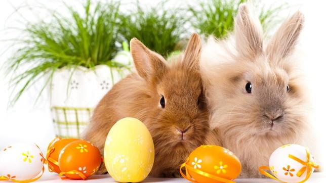 Le più belle tradizioni di Pasqua e il loro significato