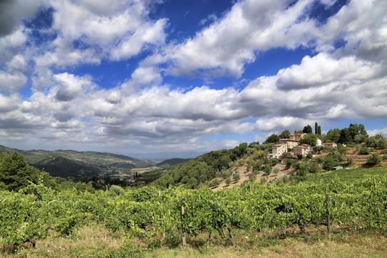 Mugello: le memorie dei Medici tra Firenze e Bologna