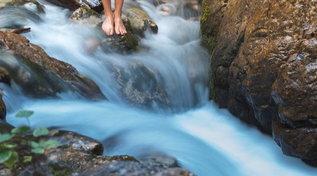 Trentino: a piedi nudi nella magia del bosco