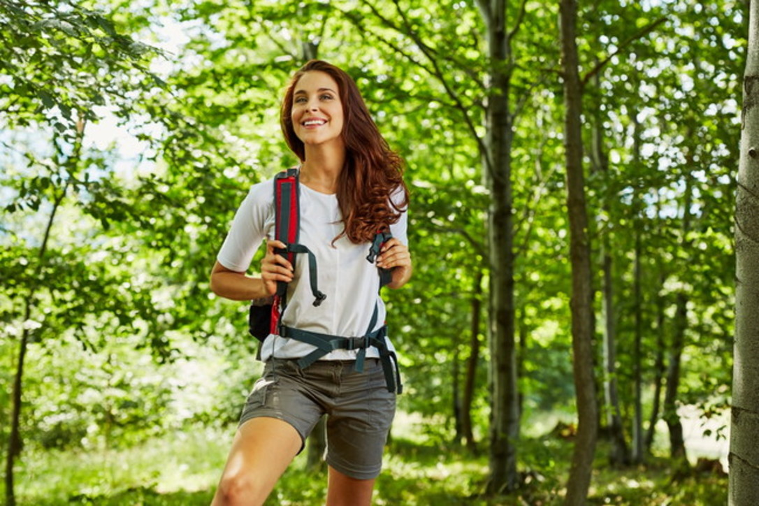 Nel bosco: il verde che cura lo stress