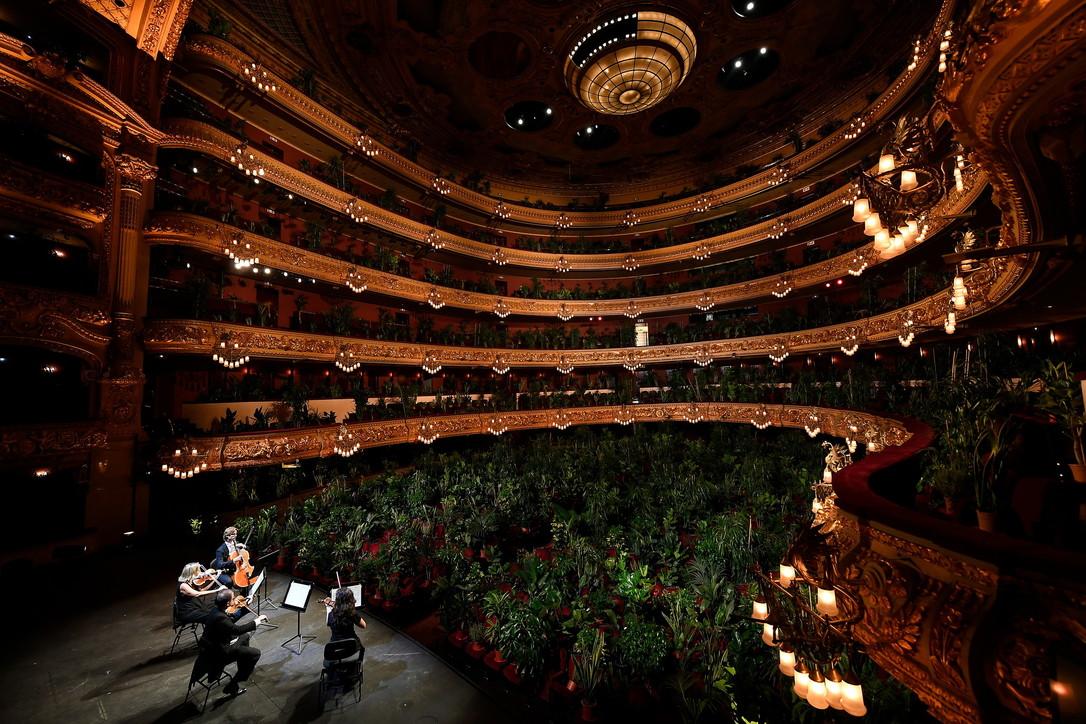 Concerto per sole piante al teatro dell'opera di Barcellona