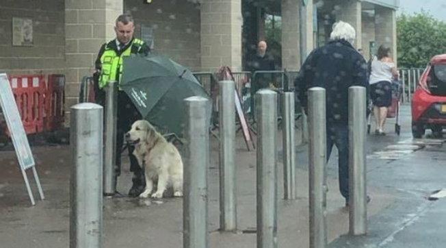 Scozia, agente ripara con un ombrello un cucciolo: la foto diventa virale