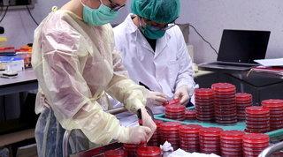 Coronavirus: 7 nuovi casi in Veneto, anche una bimba di un anno