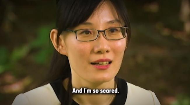 "Covid, virologa di Hong Kong: ""Pechino ha insabbiato le ricerche sul virus"""