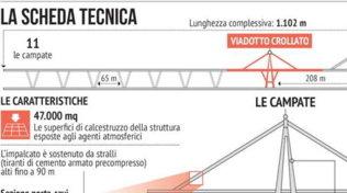 Campate e materiali, la scheda tecnica del nuovo ponte di Genova