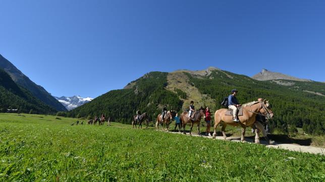 Valle d'Aosta: incontri con la Natura nella Valle di Cogne