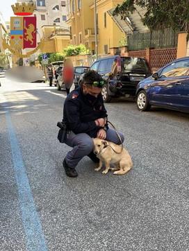 Roma, cane abbandonato per strada viene salvato e adottato da un poliziotto