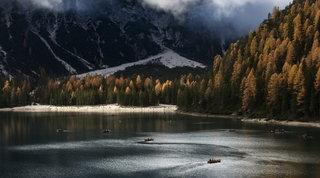 Dal Trentino alla Toscana le foto da premio per i boschi più belli