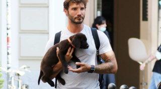 De Martino non è più solo: ha comprato un cagnolino per il suo amore...