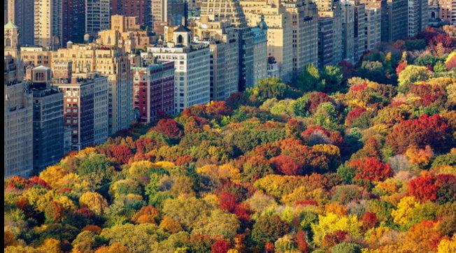 Cambio di stagione: l'arrivo dell'autunno visto dall'alto